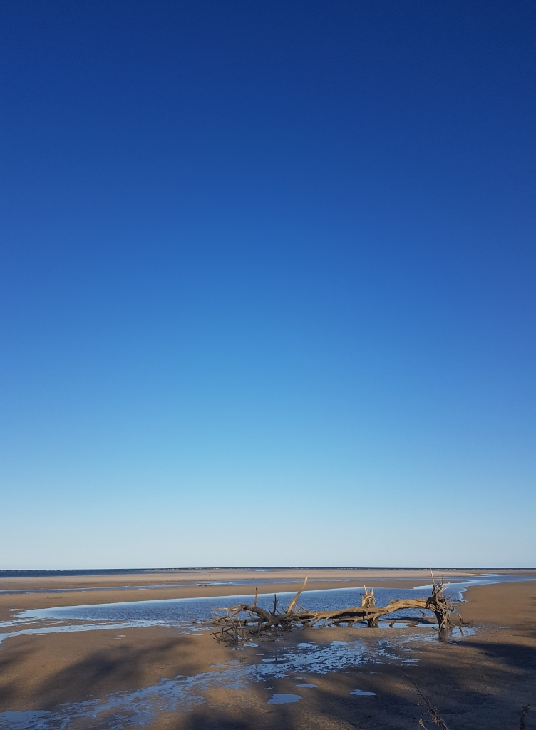 never ending blue sky at the beach at Theodolite National Park at Woodgate Queensland