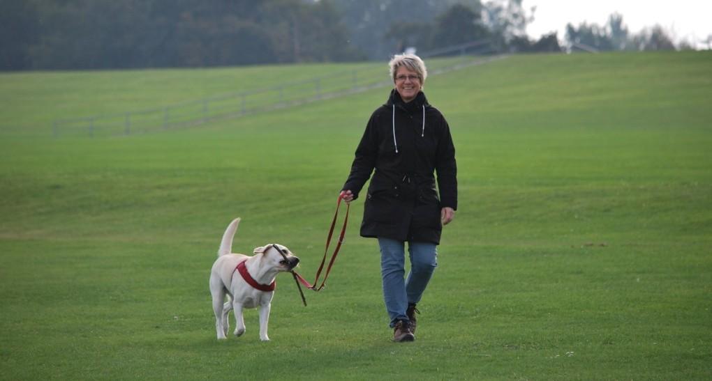 Woman walking dog in large field